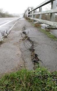 Bridge/Approach Settlement